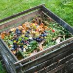 compost-casero-compostador-726x484