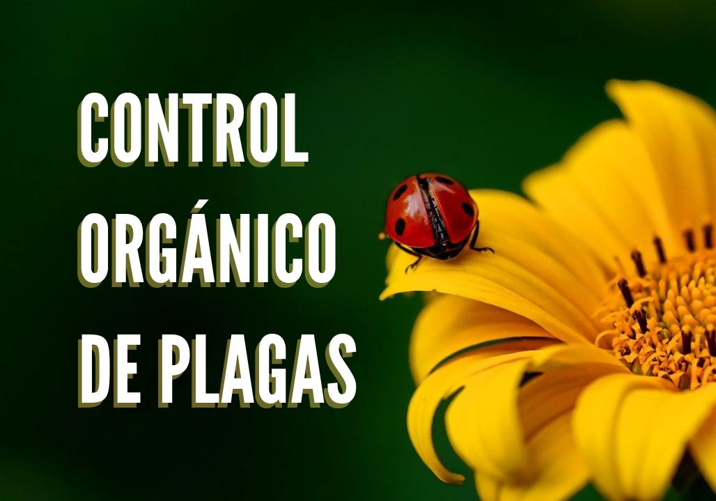 Control orgánico de plagas