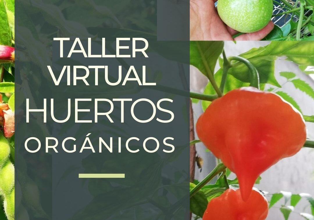 Curso virtual - huertos orgánicos